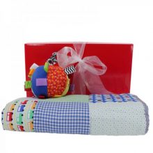 Gift Wrapped Up Baby Boy Hamper Snuggle
