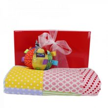 Gift Wrapped Up Baby Girl Hamper Snuggle