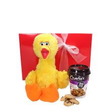 Gift Wrapped Up Big Bird Kids Gift Hamper