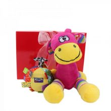 Gift Wrapped Up Cute Baby Girl Gift Hamper