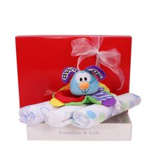 Gift Wrapped Up Welcome Newborn Baby Boy Gift Hamper