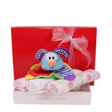 Gift Wrapped Up Welcome Newborn Baby Girl Gift Hamper