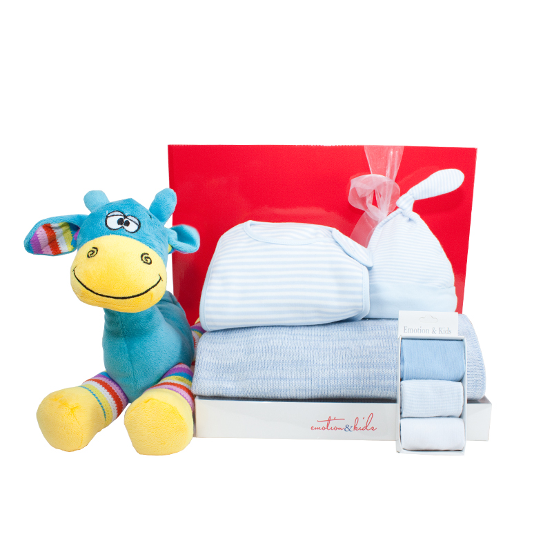 Baby Gift Hamper Melbourne : Gift wrapped up baby boy hamper it s a