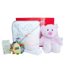 Gift Wrapped Up Newborn Baby Girl Hamper Snuggle Box