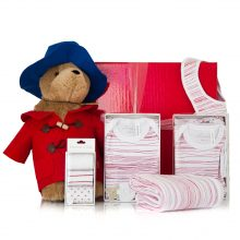 GIFT WRAPPED UP BABY GIFT HAMPER SET & PADDINGTON BEAR