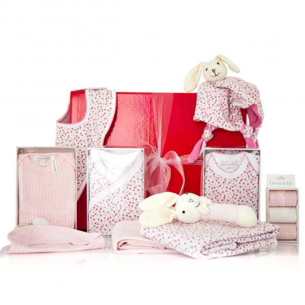 GIFT WRAPPED UP BABY GIFT HAMPER TWIN GIRLS