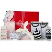 GIFT WRAPPED UP TWIN BABY GIFT HAMPER - THE BILLIE & RUDY